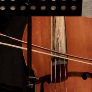 ジャズのベーシスト(ウッドベース)が弓を練習するべき理由【左手】