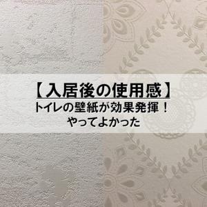 【入居後の使用感】トイレの壁紙が効果発揮!【やってよかった】