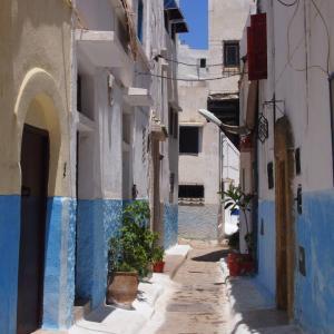 モロッコで話されている言語って?【英語・フランス語・ダリジャ】
