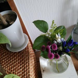 花の定期便9回目