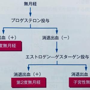 無月経の分類