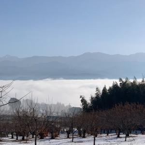 天龍川の川霧