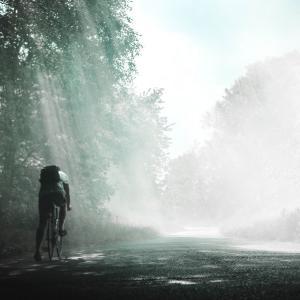 自転車とご地域