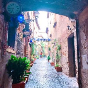 【穴場】ジブリの世界!?天空の街オルヴィエートとアッシジ村ツアーのレポート