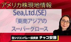 【初心者向けのオススメ情報】【アメリカ株現地情報】Sea,Ltd.(SE)|東南アジアのスーパーグロース
