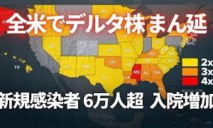【初心者向けのオススメ情報】アメリカでデルタ株まん延 新規感染者6万人超 入院も増加