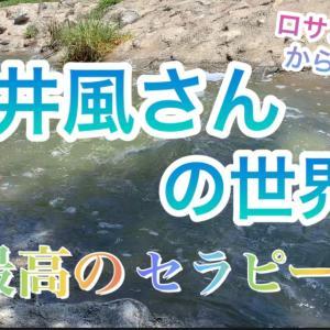 藤井風さんの世界✨最高のセラピー✨