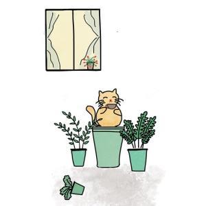 ひきこもり編 第13話 『一目惚れ』