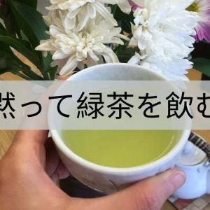 【緑茶はチート】ニキビ肌なら絶対飲むべき!
