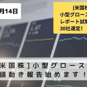 [米国株]小型グロース株値動き報告始めます!