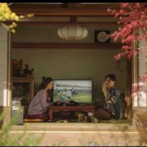 神戸新聞杯、オールカマーの推奨馬公開!