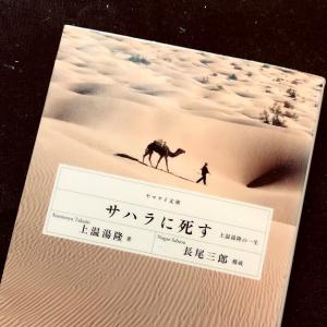 サハラ砂漠への情熱とエネルギーに満ち溢れた冒険本