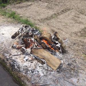 木を 燃やす