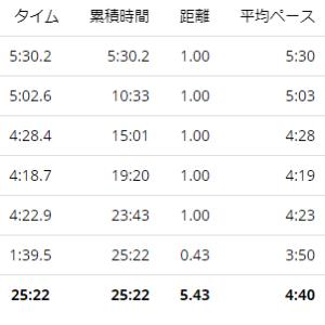 練習日誌21/1/11ジョグ5km シューレース交換