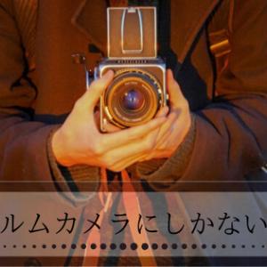 【女子にもおすすめ】フィルムカメラの魅力をフィルム大好きマンが紹介します!