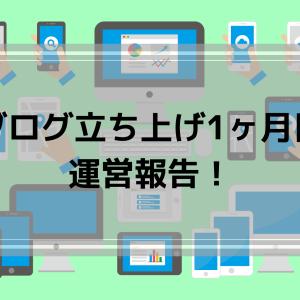 初心者ブログの開設1ヶ月目の運営報告!PV数や流入元、収益について!