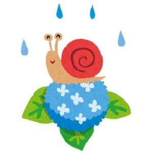 【虫】梅雨の時期になると虫たちはよく遊びにきます