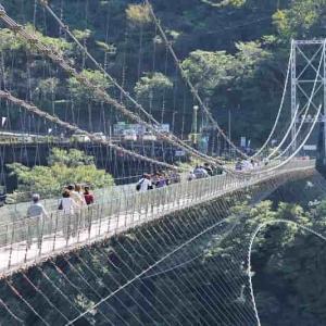スリル満天! 谷瀬の吊り橋 -おじおば下道の旅-