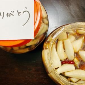 【自炊ライフ】らっきょう甘酢漬け 黒酢編