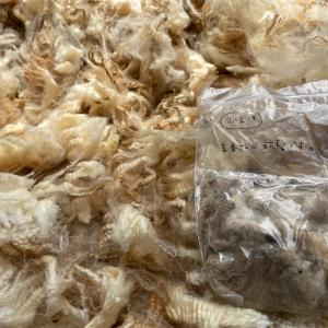 羊毛を一頭買いした時のお話