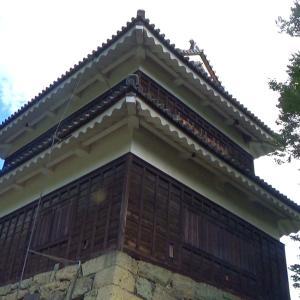 #15 上田城跡公園並びに上田市街を観光するおじさん(長野県上田市)