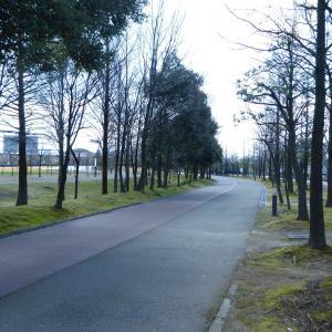 富山のランニングスポット紹介。富山県総合運動公園クロスカントリーコース