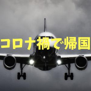 コロナ禍で中国から日本へ帰国するときの流れのまとめ