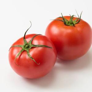 トマトパワー