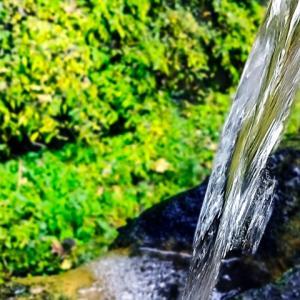 水の自然な美味しさに気づく
