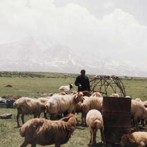 イラン北部で、シャーサヴァーンの人達と裸の付き合い