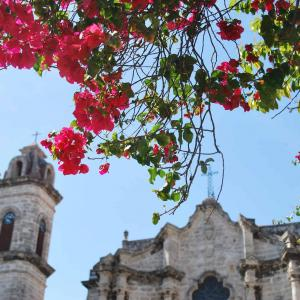 ハバナの歴史的ホテルと旧市街