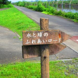 水と緑のふれあい公園ロード(起点)から緑のヘルシーロードをおもむくままに