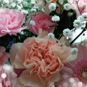 ◆追記あり!【6月のご予約】ホリスティックライフサロンAROMA COLOR@千葉