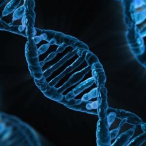 朗報!新たにうつ病に関する遺伝子が発見される。