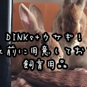 DINKs+ウサギ!お迎え前に用意しておきたい飼育用品