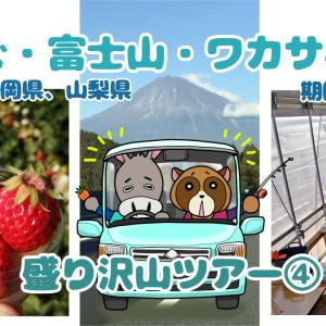 いちご・富士山・ワカサギ釣り4