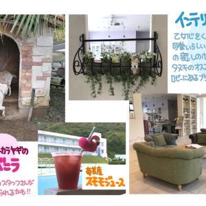 奄美諸島のんびりツアー3