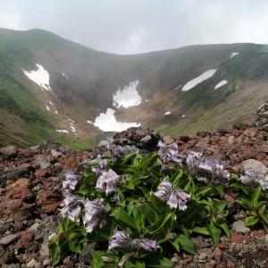 毎日早起き北海道登山ツアー