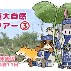北海道大自然悠ツアー3