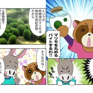 北海道悠々大自然ツアー5