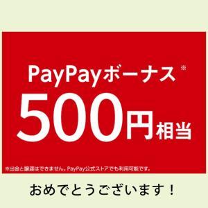 私もPayPayボーナス500円当たりました〜\(^o^)/