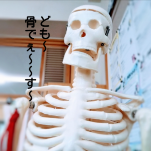 そのお腹、肋骨が開いているせいかも?!【肋骨を引き締めよう!】
