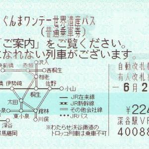 ぐんまワンデー世界遺産パス (コード241-22)
