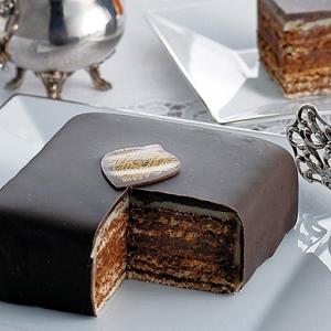 チョコレート専門店の美味しいチョコレートケーキの種類とその秘密は?