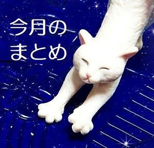 2020.10★今月のまとめ