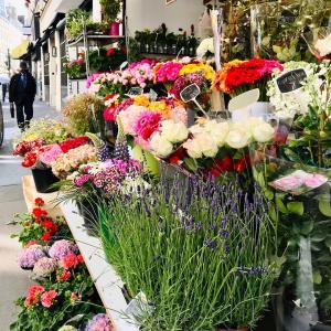お花屋さんが楽しい