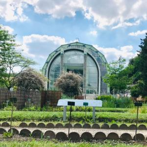 ルイ13世の植物園
