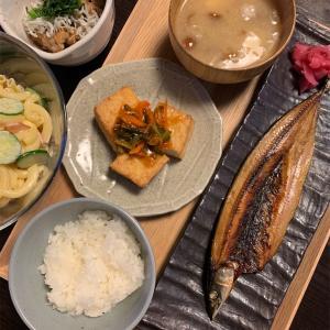 今日の夜ご飯とお弁当。