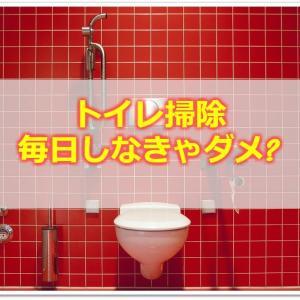 トイレ掃除はどのくらいの頻度がベスト?簡単に済ませるコツは?
