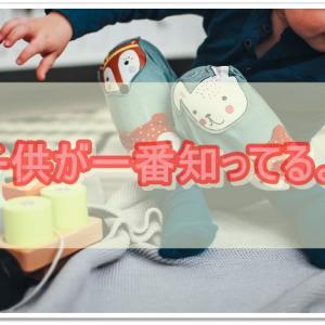 おもちゃの断捨離は子供と一緒に!楽しく選ばせるコツと収納法も